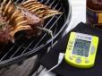 Termometro barbecue: spillo, sonda o wireless