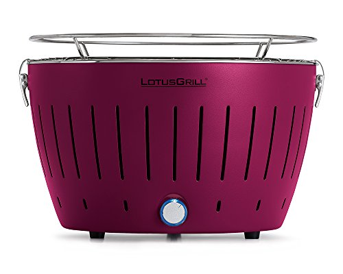 Barbecue Lotus Grill