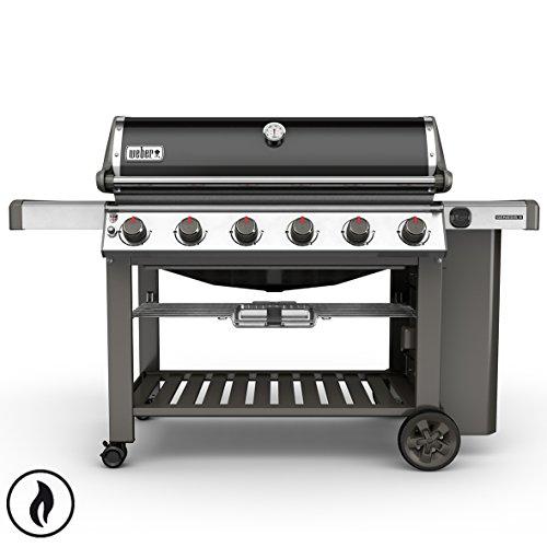Recensione dei migliori barbecue Weber a gas e carbone