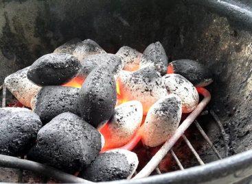 Accenditore elettrico per barbecue