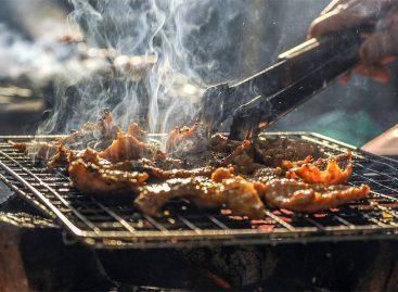 Griglie per barbecue: quale scegliere?
