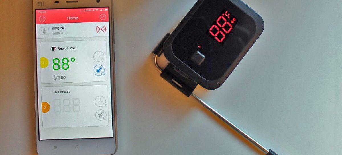 Termometro Bluetooth Inkbird IBT-2X